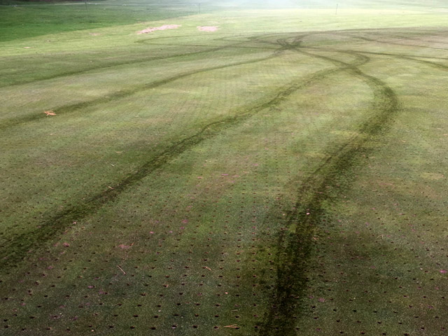 Damaged green