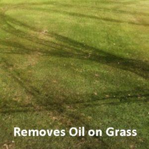Oil on Grass 400 x 400 Text