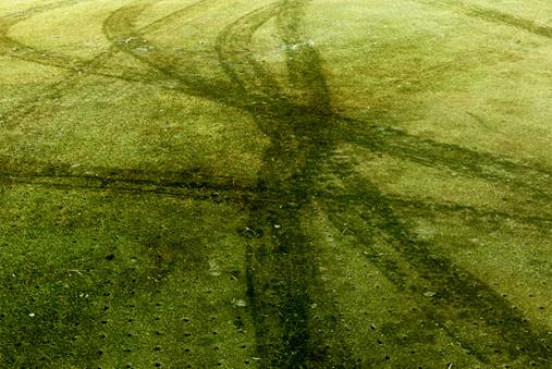 Damages Golf Green