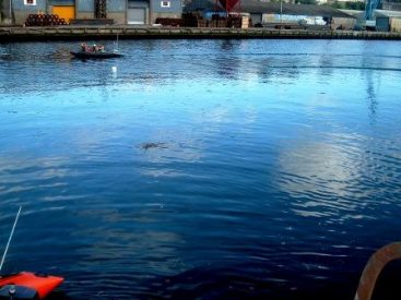 Drogheda diesel spill on water treated by S-200